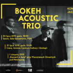 Bokeh Acoustic Trio